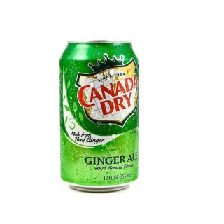 Can Dogs Drink Ginger Ale?