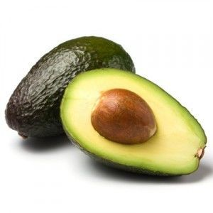Can I give my dog avocado?