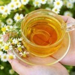 Can-I-give-my-dog-Chamomile-Tea1