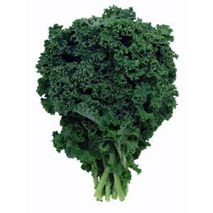 Can I give my dog kale?
