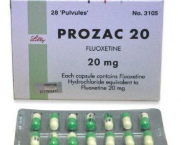 Can Dogs Take Prozac?