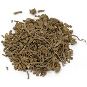 Can Dogs Eat Valerian Root?