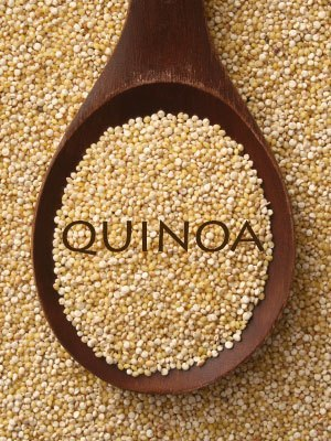 Can I Give My Dog Quinoa?