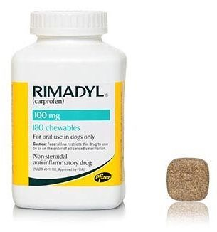 Can Dogs Take Rimadyl?