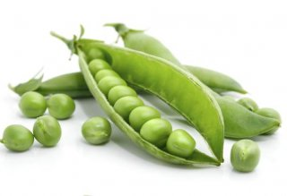 Can Dogs Eat Peas? | Healthy or Harmful