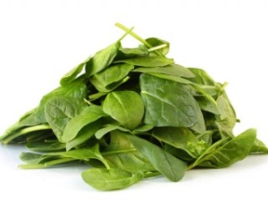 Can I Give My Dog Spinach