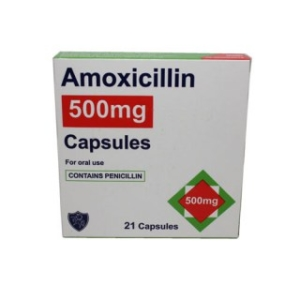Can I Give My Dog Amoxicillin?