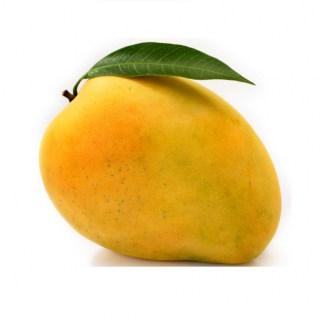 Can I Give My Dog Mango?